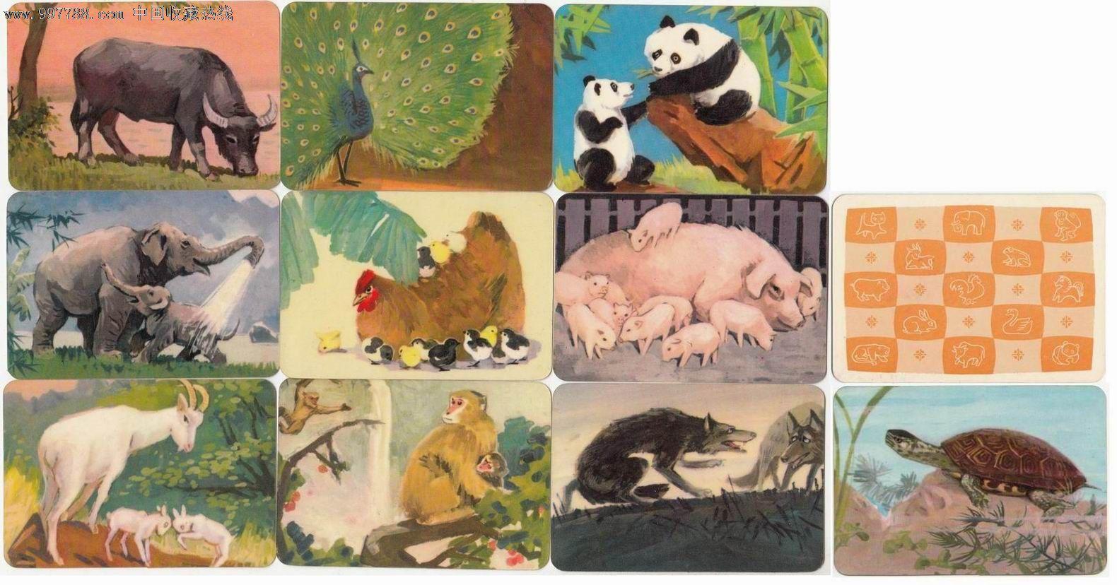 【70年代-小画片】动物·10枚_价格30元_第1张_中国收藏热线