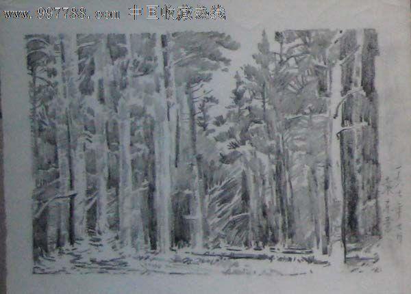 八七年老铅笔画——小树林