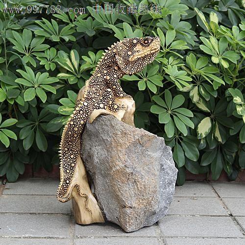 送礼佳品/天然根雕奇石/老糠木根抱石/动物吉祥摆件蜥蜴yw228
