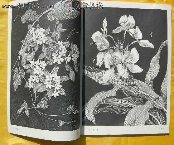 花卉黑白画_价格元_第2张_中国收藏热线