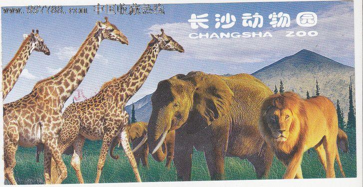 长沙动物园_价格元_第1张_中国收藏热线