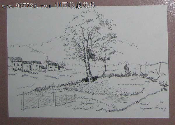精品钢笔画——树,田野