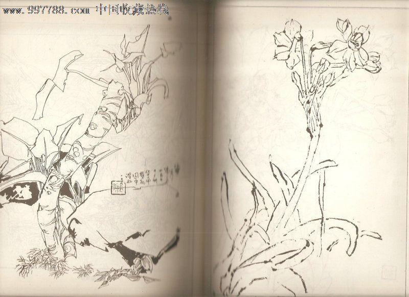 中国书画函授大学教材:中国画花卉写生【黑白彩色图片