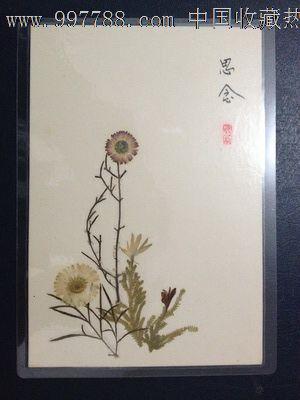 手工制作植物标本【思念】-价格:5元-se14402089-树叶