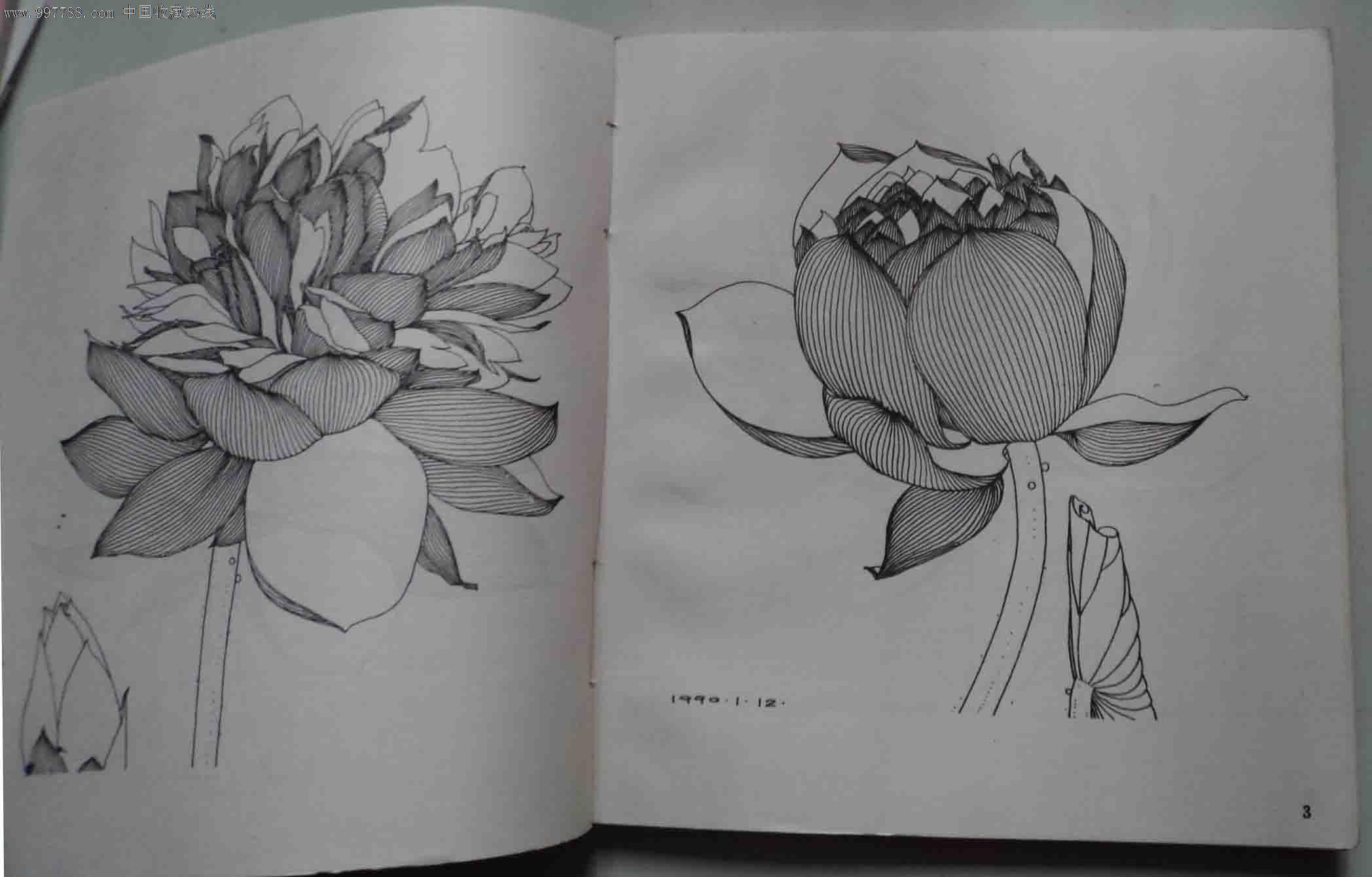 王翔白描荷花(画册)-价格:15元-se15170622-素描/速写