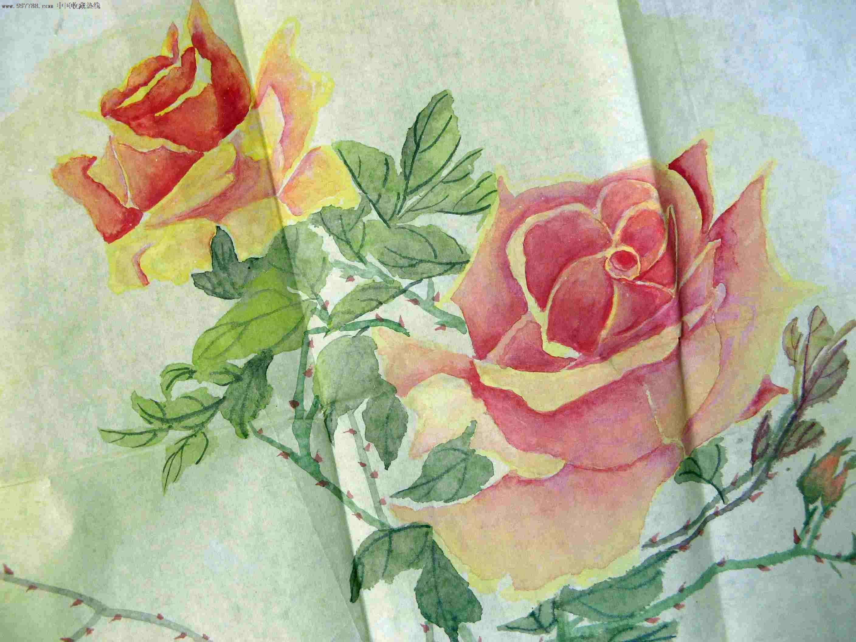 幅无款玫瑰花图
