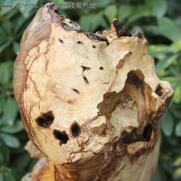 根抱石,(亦称木包石,根包石,树抱石)。根抱石不是指某种树种,而是指有树根把石头包住生长,形成有根有石头在一起的奇特现象。造成这种现象的原因是树木生长在泥土贫瘠的山中,树根紧紧地贴住岩石生长,最终将石块紧紧包住,形成包石现象。生长在石头上的树木,环境特别恶劣,树木生长异常缓慢,到达能做根艺的程度,往往需要上百年时间,一般的都有二三百年,所以这样的树木非常坚硬。一般有红豆杉,鸡翅木称杆木等。比较多见的地方是大山里面溪流两旁及比较贫瘠多石头的山坡上。整体无拼接。请注意,一个编号只对应一个宝贝,照片是