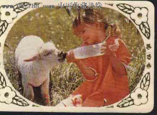 89年小女孩喂羊