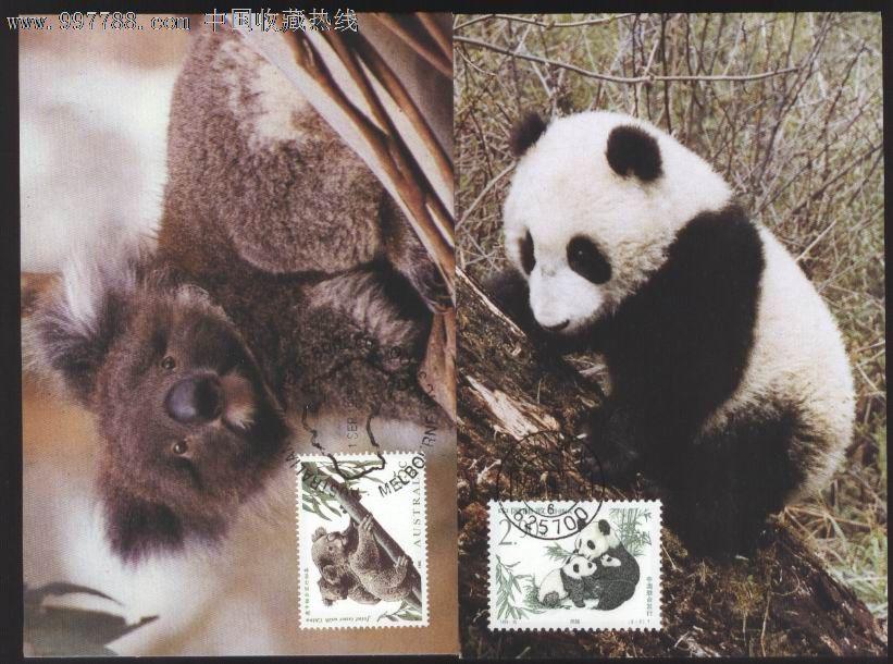 熊猫考拉图片大全可爱