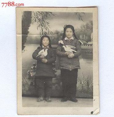 五十年代少女手捧和平鸽