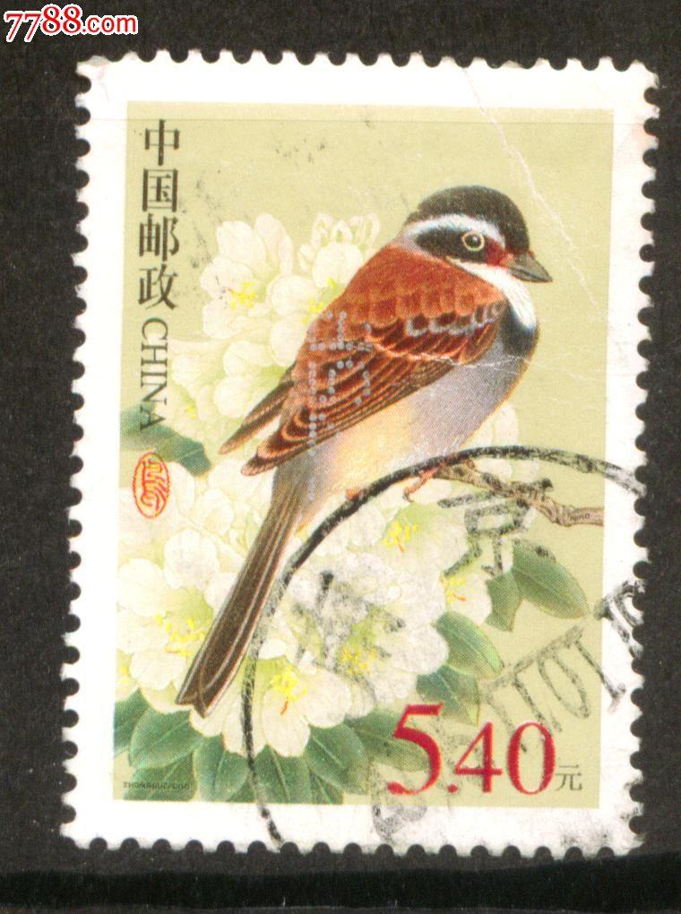邮票_普31 藏鹀 面值5.4元信销邮票 近上品