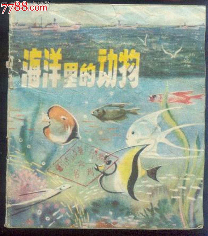 海洋里的动物(彩色)
