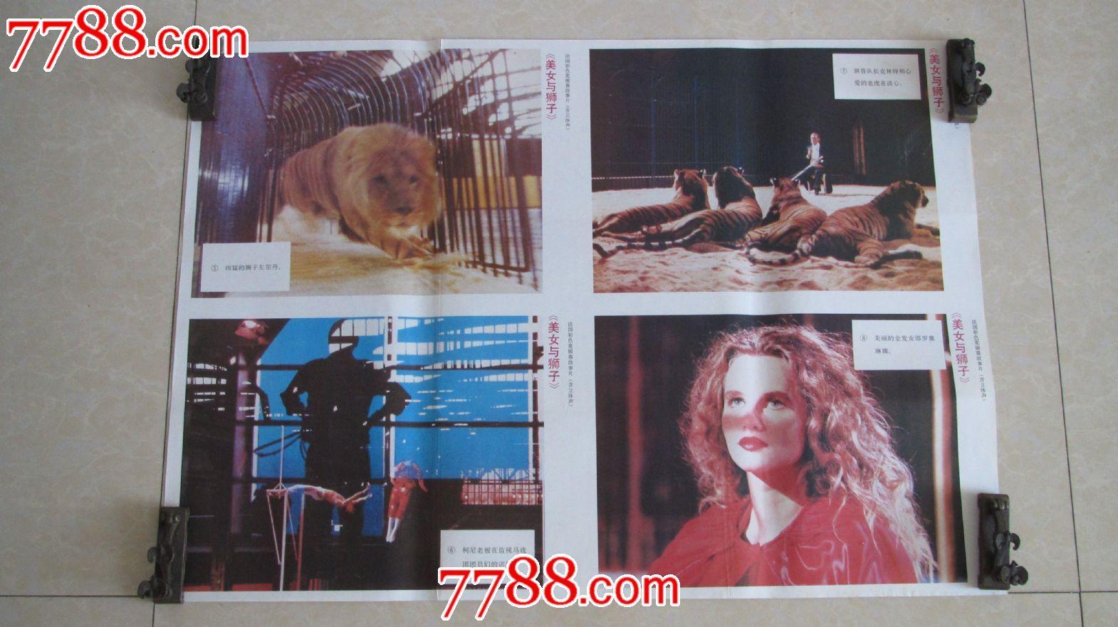美女与狮子法国 电影海报