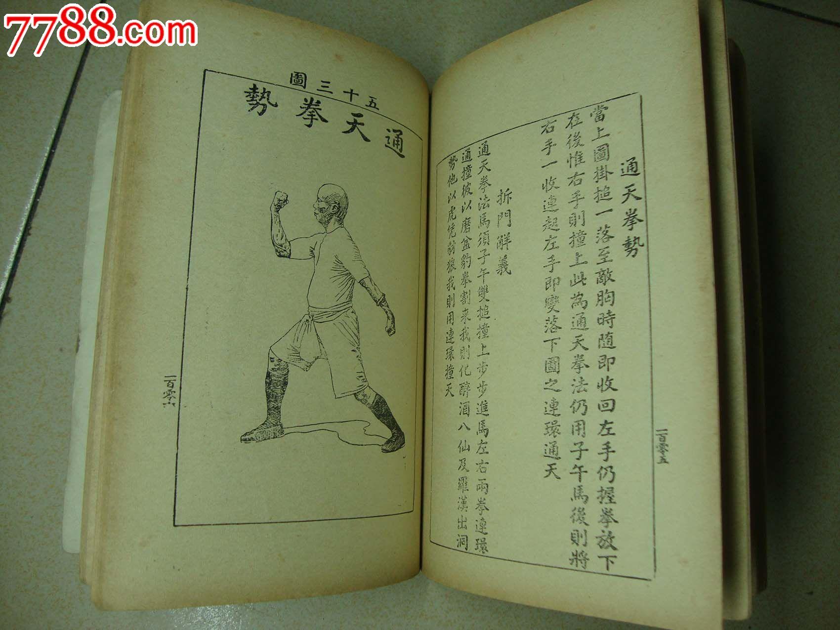 岭南拳术林世荣遗技/虎鹤双形