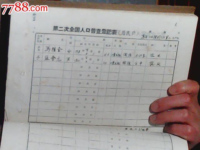 第六次人口普查_全国人口普查系统