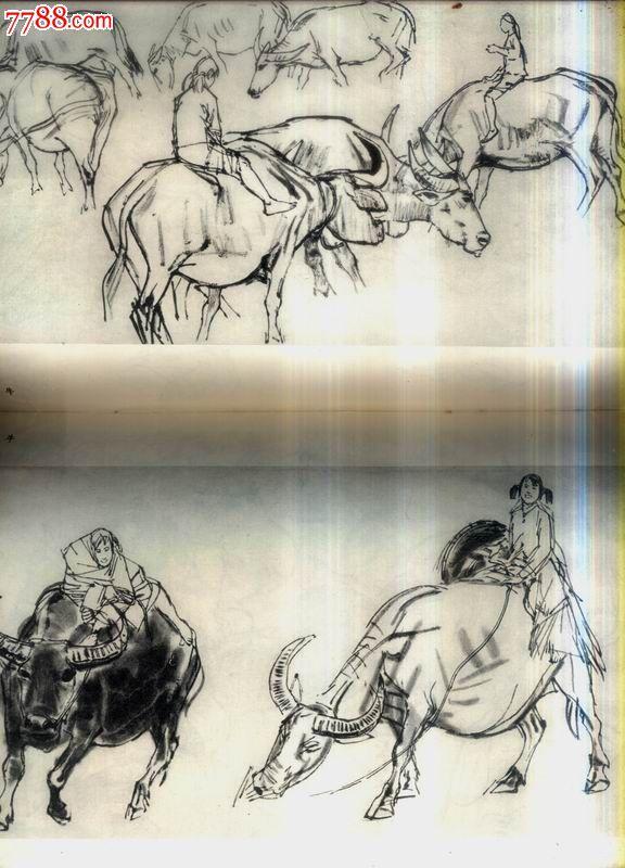 动物写生-价格:6元-se22901592-素描/速写画册-零售