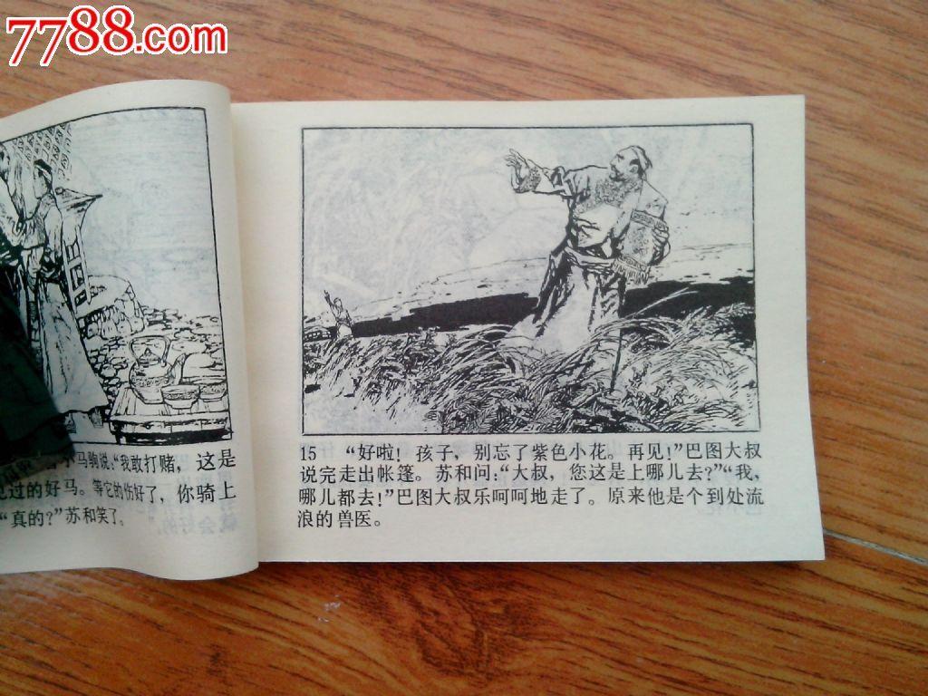马头琴的传说图片