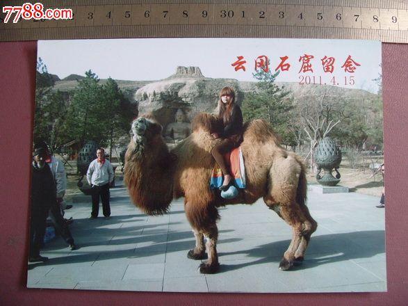 云冈石窟美女骑骆驼
