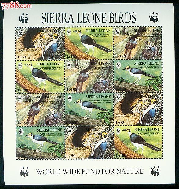 白颈岩鹛(wwf世界野生动物保护基金会)小版张新票1全