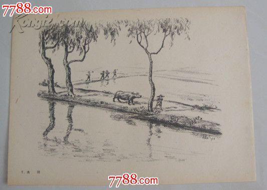 铅笔画帖【1963年印静物,人物,风景,动物,32幅全】