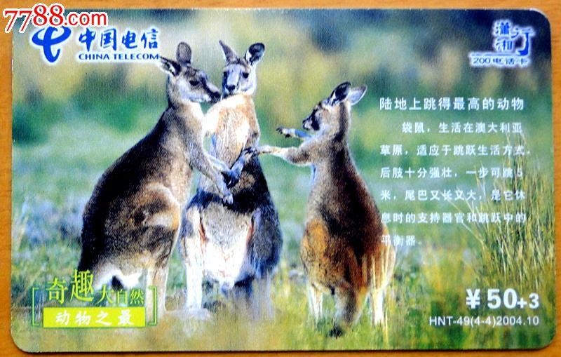湖南电信200/ip卡1枚(动物之最)