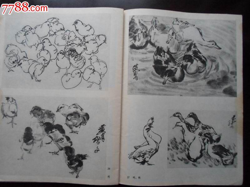 动物写生-综合绘画类画册--se24538781-零售