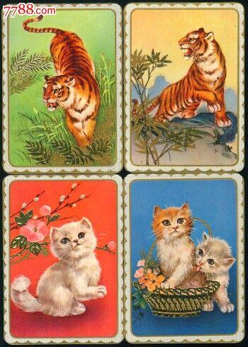 猫和老虎_价格15元_第1张