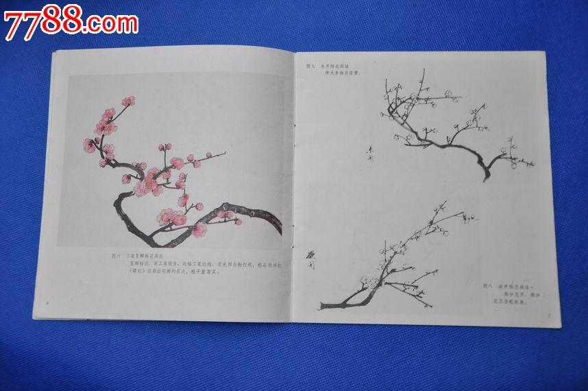 怎样画梅花——中国画技法入门
