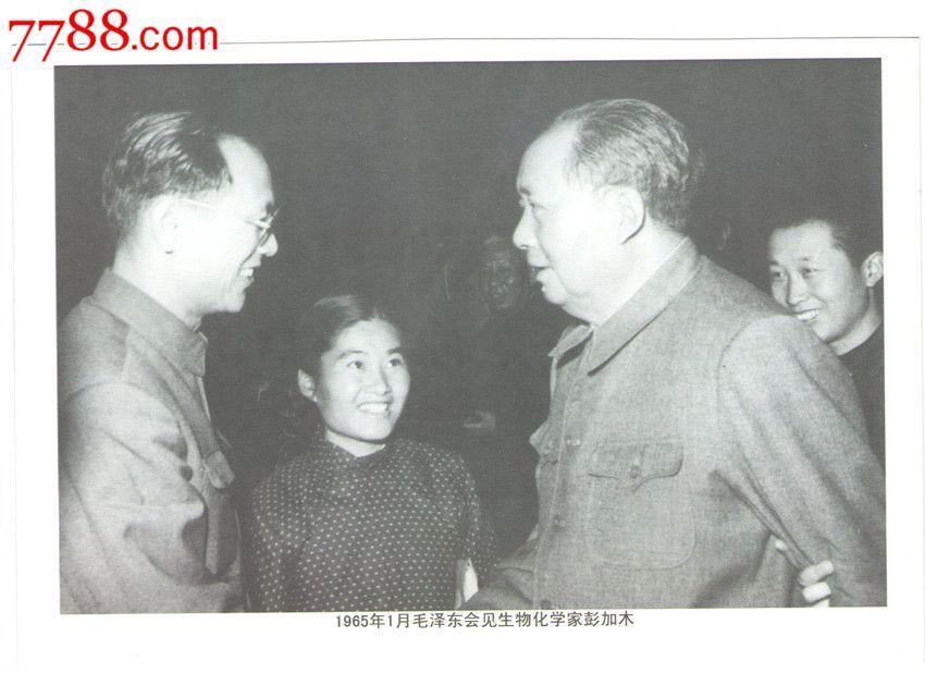 彭加木张照片_1980年总结彭加木事件的新华社记者在稿件中
