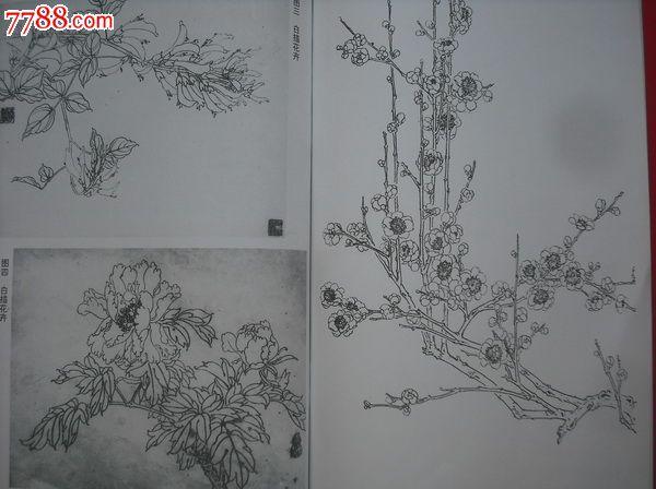 工笔花鸟画技法.美术自考本科教材