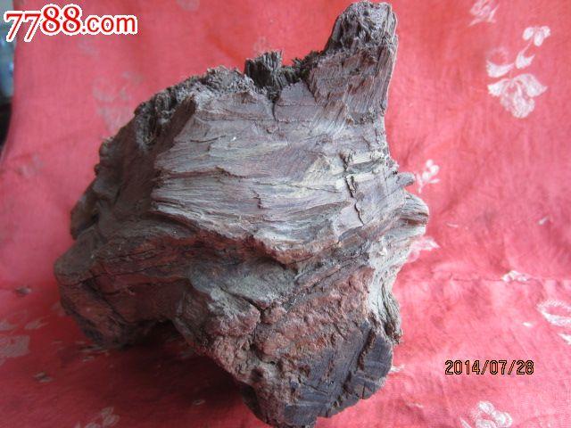 五六百年的海南紫油梨树头山子