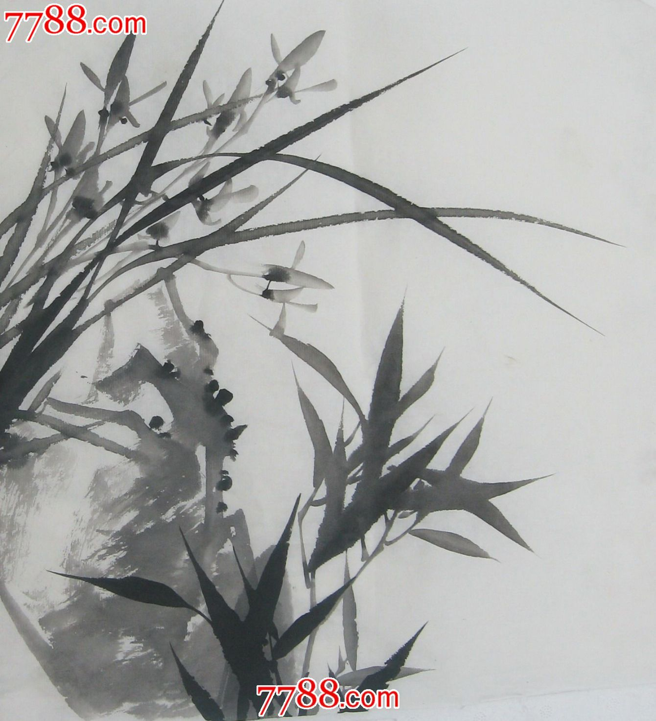 特价水墨画花鸟国画兰花画